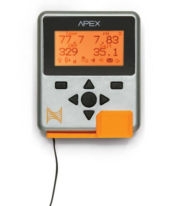 Apex Display Mount Yuma Orange